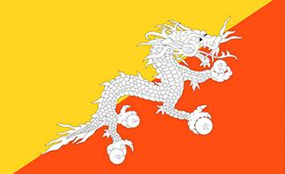 Kingdom of Bhutan joined Regional Hub of Сivil Service in Astana